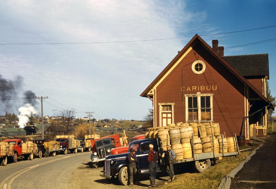 Potato Trucks at Caribou, Maine